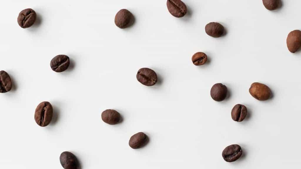 caffeine in beans