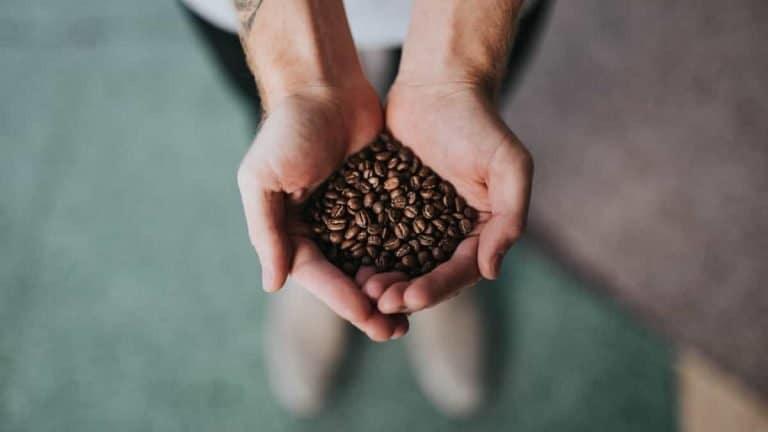 Best Espresso Beans 2021