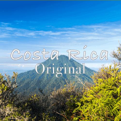 Volcanica Costa Rica Dark
