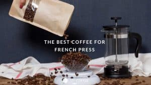 French Press Brew