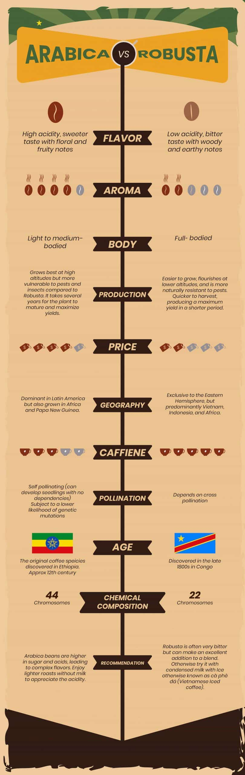 difference between arabica and robusta infographic