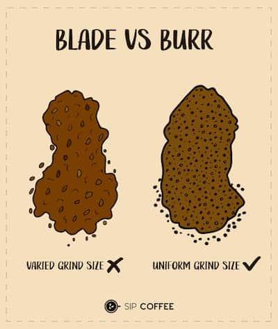 blade vs burr