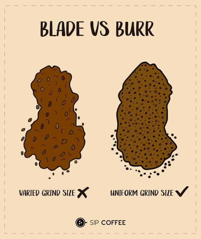blade vs burr infographic