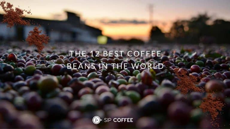 The 12 Best Coffee Beans Picks from around the world