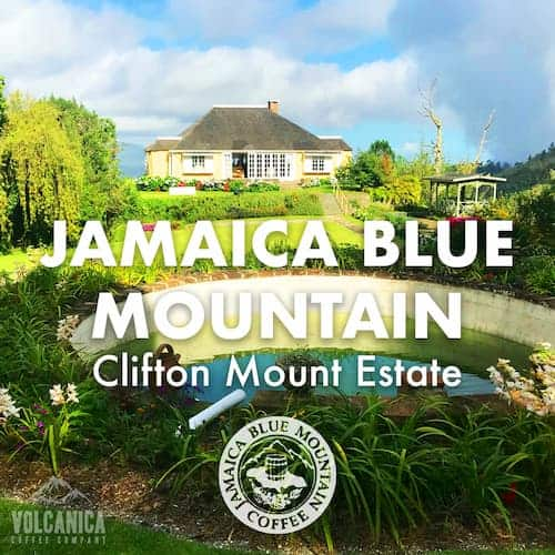 100% JBM, Clifton Mount Estate
