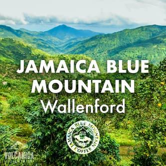 Wallenford Estate - 100% Certified JBM