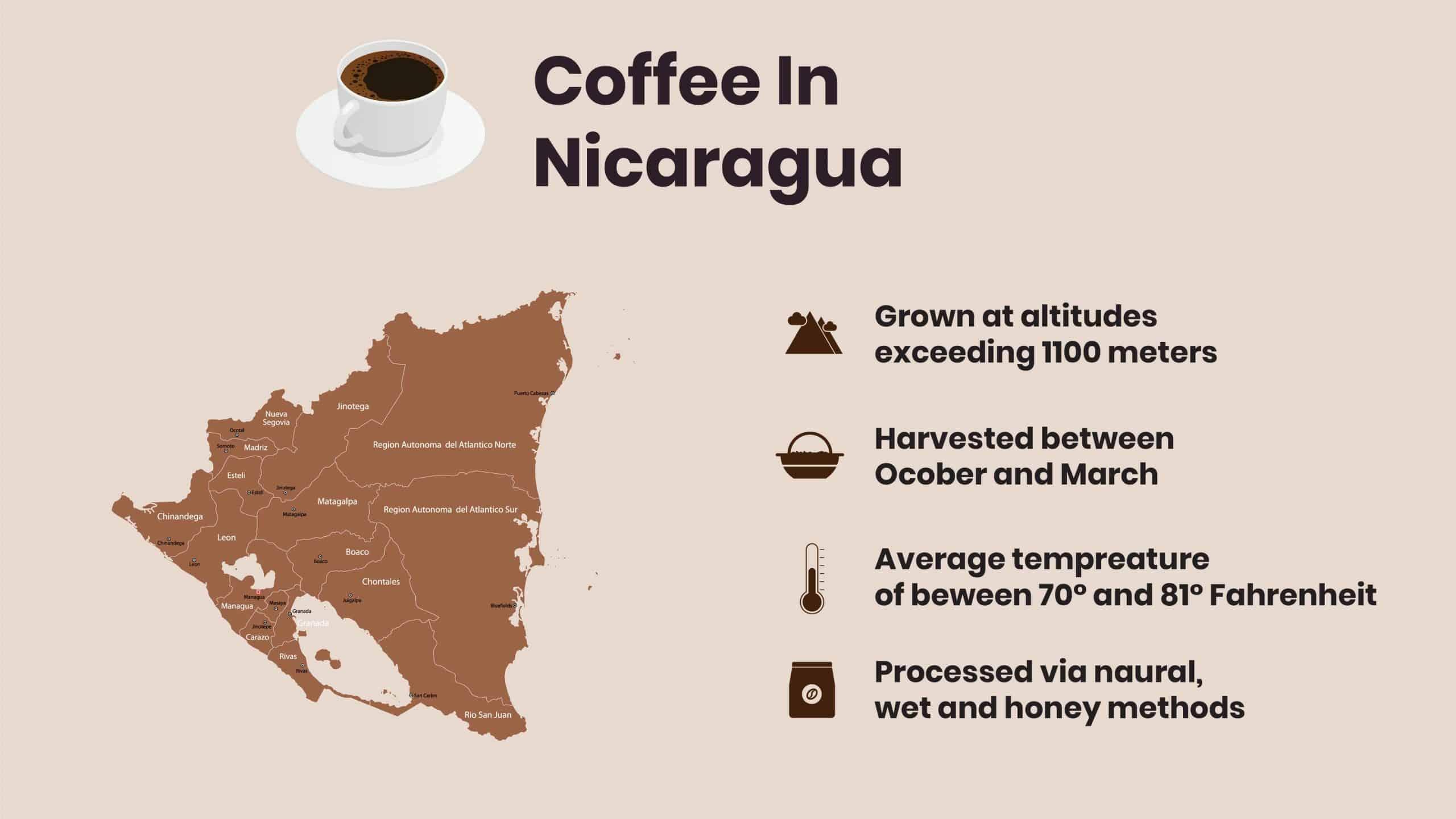 Nicaragua Coffee facts