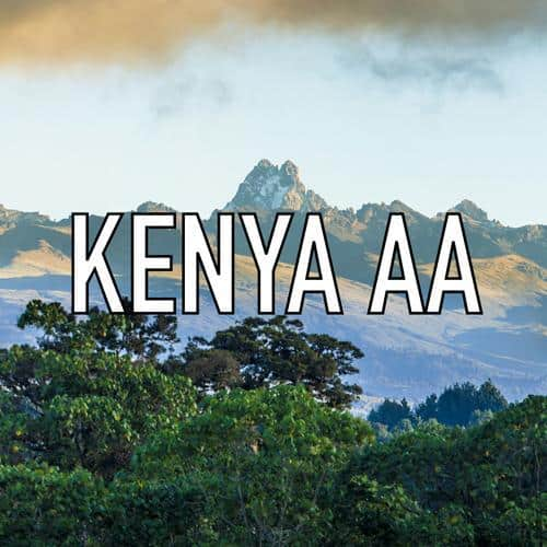 Volcanica - Kenyan AA Medium Roast