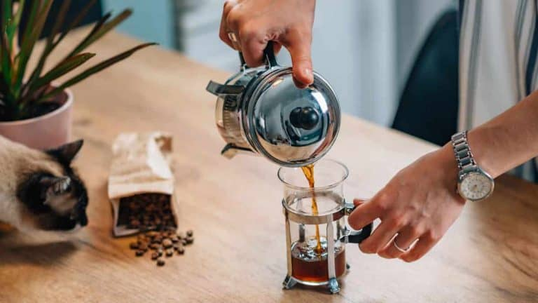 How To Use A French Press For Tasty Coffee