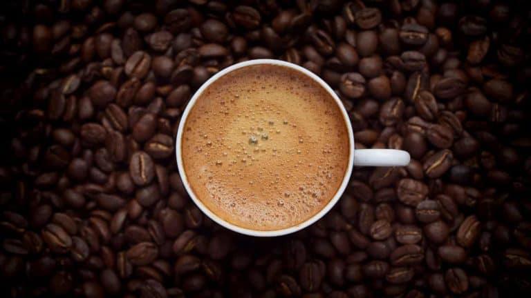 Best Plastic free coffee maker