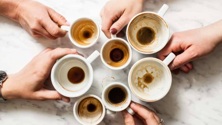 25 Types of espresso drinks – Find your Favorite!
