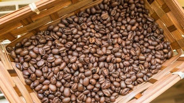 beans degassing