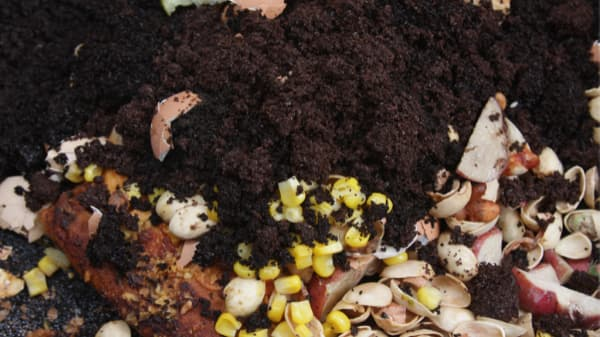 compost grounds