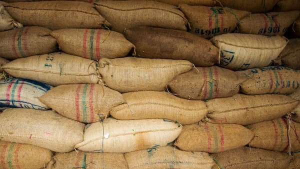 bags of green coffee