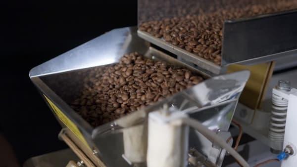 fresh roasted beans