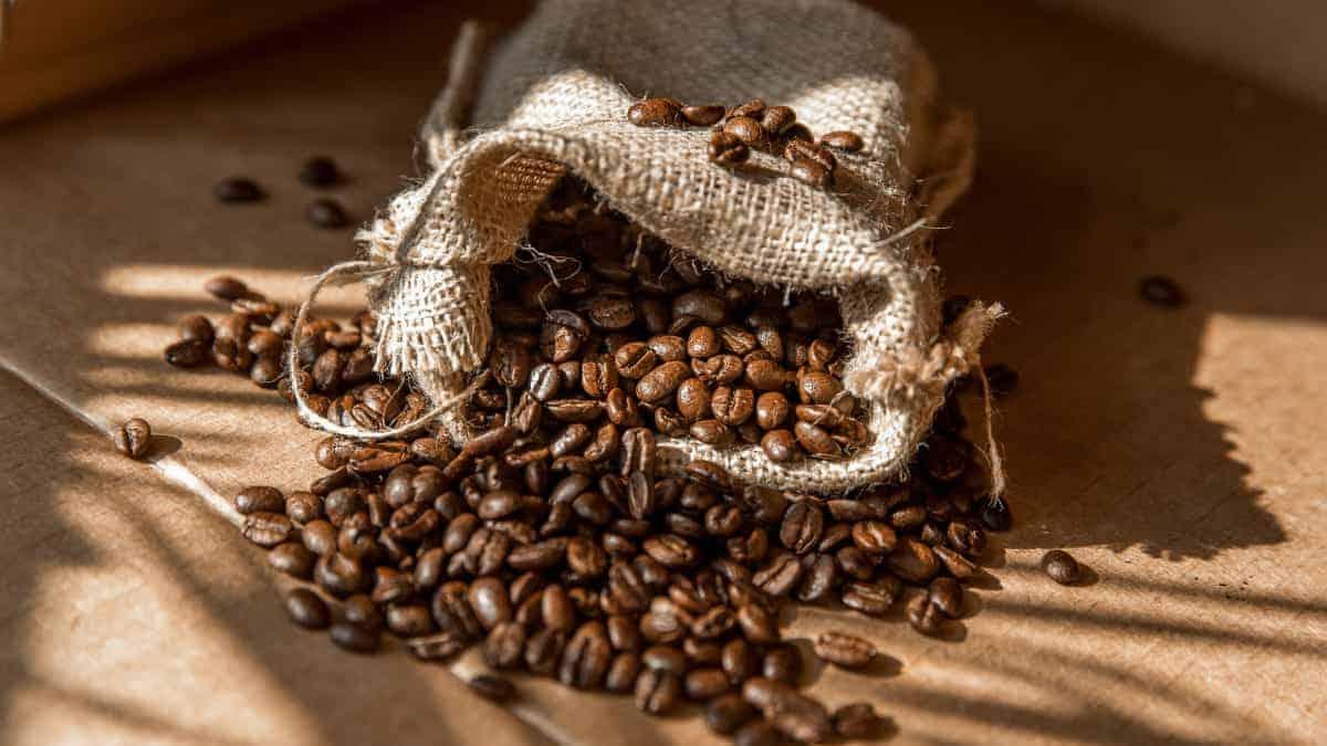 lbs of coffee